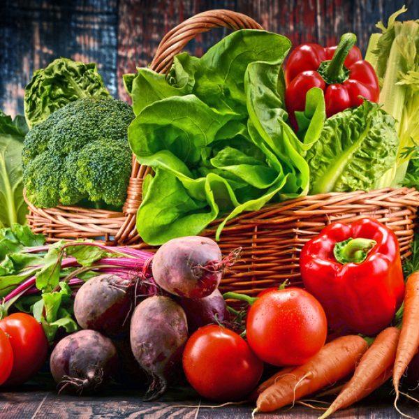 supplier-sayur